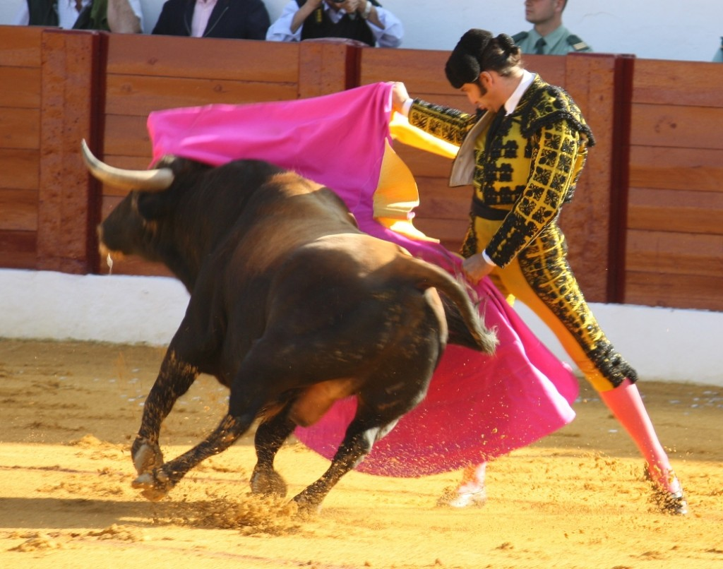 Friendly bullfighting show in Málaga, with lunch and flamenco